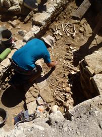 Fig. 2 Vue des ossements tapissant le fond de l'ossuaire dans la structure semi-enterrée